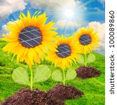 Solar panels on the sunflowers. Environmental concept. Pure energy metaphor. - stock photo