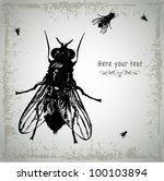 several large black flies... | Shutterstock .eps vector #100103894
