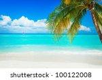 beach | Shutterstock . vector #100122008
