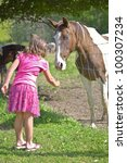 A cute little girl feeding a wild flower to a horse in a pasture. - stock photo