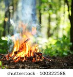 bonfire in the forest. | Shutterstock . vector #100322588