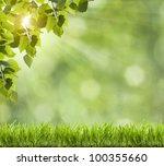 eco nature   green and blue... | Shutterstock . vector #100355660