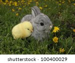 Stock photo gray rabbit bunny baby and yellow chick best friends 100400029