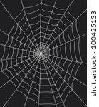 spider web | Shutterstock . vector #100425133