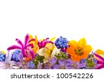 Stock photo beautiful bouquet of spring flowers on a white background 100542226