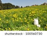 Jug of milk on the meadow. Emmental region, Switzerland - stock photo