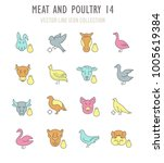 collection vector flat icons...   Shutterstock .eps vector #1005619384