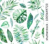 watercolor leaves branch... | Shutterstock . vector #1005649723
