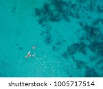 family snorkeling over coral... | Shutterstock . vector #1005717514
