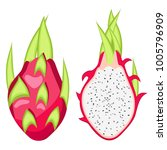 pitahaya  dragon fruit vector... | Shutterstock .eps vector #1005796909