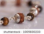 seeds of the sacred rudraksha ... | Shutterstock . vector #1005830233