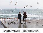 people feed a flock of seagulls ... | Shutterstock . vector #1005887923