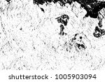the grunge texture black and...   Shutterstock . vector #1005903094