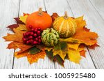 pumpkins and autumn  leaves on... | Shutterstock . vector #1005925480
