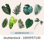 beautiful hand drawn botanical... | Shutterstock .eps vector #1005957130