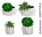 flowers in concrete pots vector | Shutterstock .eps vector #1005975913