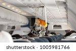 oxygen mask falling out in... | Shutterstock . vector #1005981766