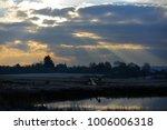 winter sunshine at newtown isle ... | Shutterstock . vector #1006006318