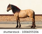 Draft Horse Show At The...