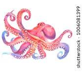 pink watercolor octopus. sea... | Shutterstock . vector #1006081399