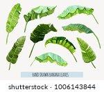 beautiful hand drawn botanical... | Shutterstock .eps vector #1006143844