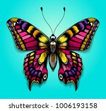 beautiful colorful butterfly on ... | Shutterstock .eps vector #1006193158