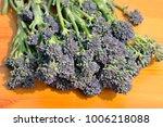 freshly picked bunch of purple... | Shutterstock . vector #1006218088