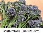 freshly picked bunch of purple... | Shutterstock . vector #1006218094