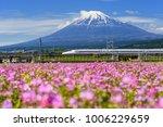 shizuoka japan   may 05 2017 ... | Shutterstock . vector #1006229659