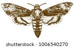vector antique engraving... | Shutterstock .eps vector #1006540270