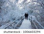 people walk in the woods in the ... | Shutterstock . vector #1006603294