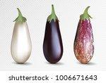 vector photo realistic fresh... | Shutterstock .eps vector #1006671643
