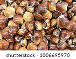 wallpaper of clams | Shutterstock . vector #1006695970