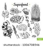 superfood hand drawn vector... | Shutterstock .eps vector #1006708546