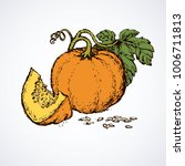tasty raw ripe fresh sappy musk ... | Shutterstock .eps vector #1006711813