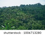 beautiful lanscape with green... | Shutterstock . vector #1006713280