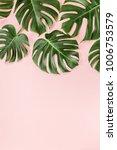 tropical leaves monstera on...   Shutterstock . vector #1006753579