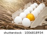business idea  golden egg in... | Shutterstock . vector #1006818934