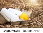 business idea  golden egg in... | Shutterstock . vector #1006818940