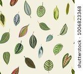 vintage botanical leaves.... | Shutterstock .eps vector #1006823368