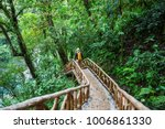 hiking in green tropical jungle ... | Shutterstock . vector #1006861330