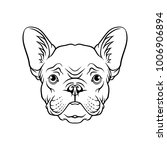black and white sketch of pug... | Shutterstock .eps vector #1006906894
