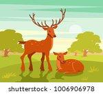 summer wildlife landscape ... | Shutterstock .eps vector #1006906978