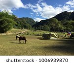 camping tent and horses with... | Shutterstock . vector #1006939870