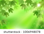 forest fresh green leaves with... | Shutterstock .eps vector #1006948078
