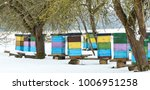 colorful beehives with... | Shutterstock . vector #1006951258