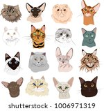 Stock vector drawn cats doodle set 1006971319