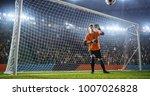 soccer goalkeeper in action on... | Shutterstock . vector #1007026828