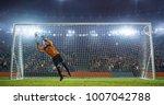 soccer goalkeeper in action on... | Shutterstock . vector #1007042788