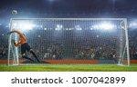 soccer goalkeeper in action on... | Shutterstock . vector #1007042899